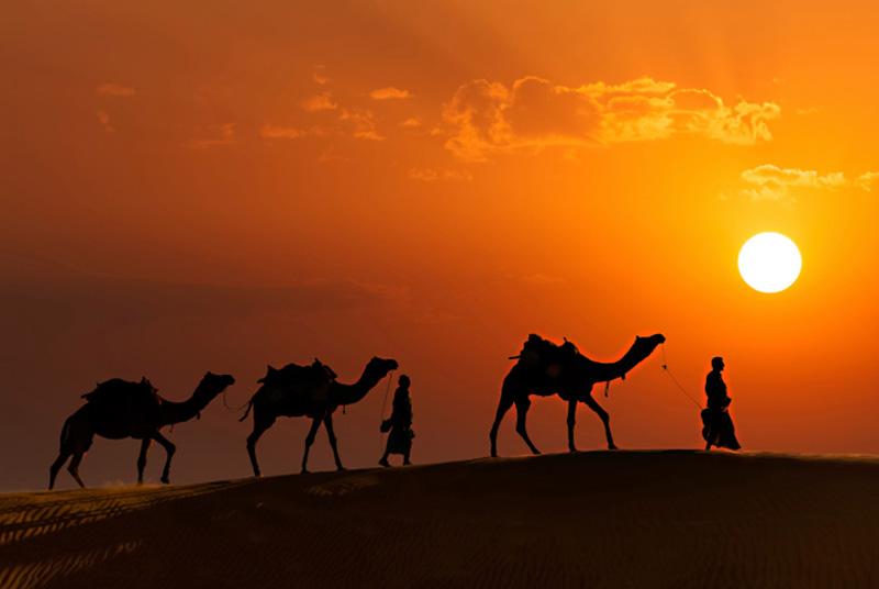 Rajasthan attrction
