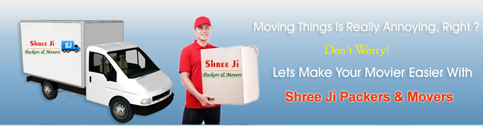 packers and movers team