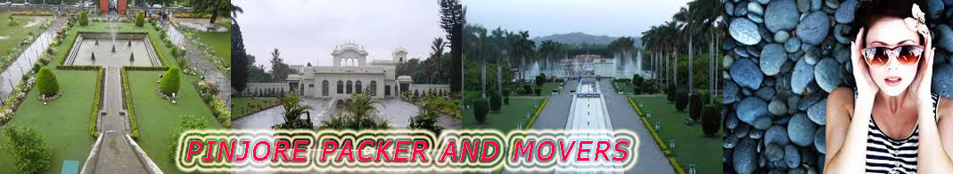 packers and movers in pinjore